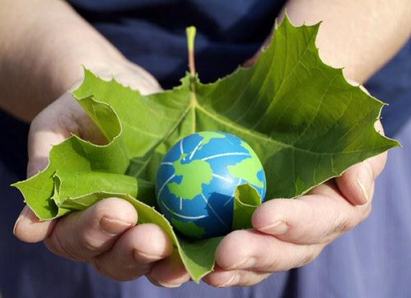 Día Mundial del Medio Ambiente 2015