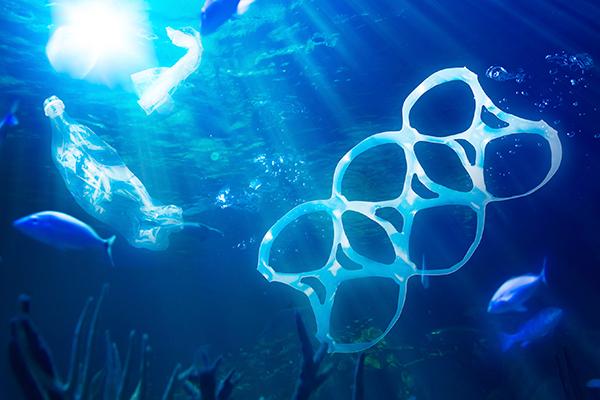 Basura marina y sus consecuencias